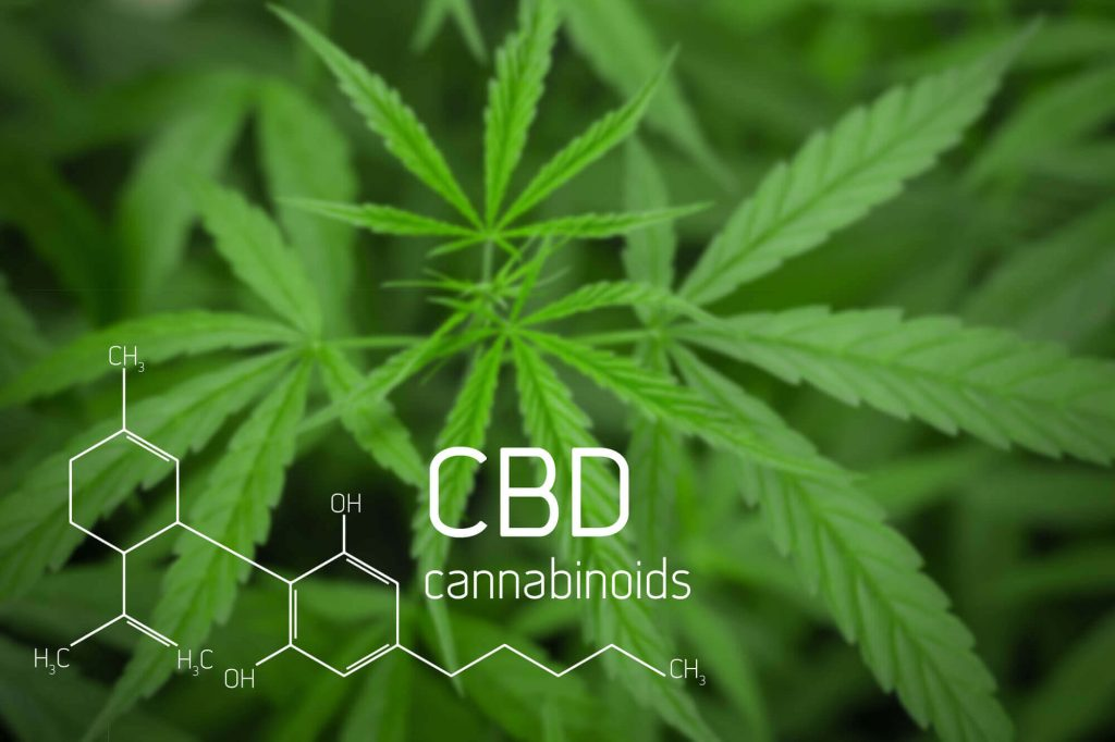 Importance of using CBD oil